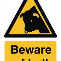 Beware Of Bull Sign